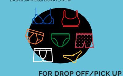 Bra & Underwear Drive